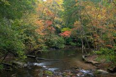 The quiet stream. A stream in the Smoky Mountains Royalty Free Stock Photo