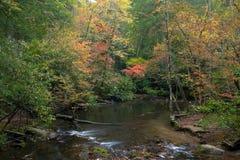 The quiet stream Royalty Free Stock Photo