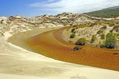 Quiet Stream in Coastal Dunes Stock Photos