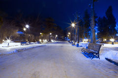 Quiet street in night winter park Stock Image
