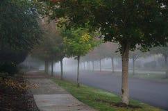 Quiet street in Redmond in autumn fog Royalty Free Stock Photography