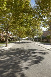 Quiet street view in a residential area Royalty Free Stock Photo