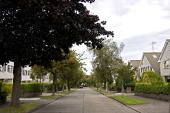Quiet suburban street. A leafy street in a good neigbourhood Stock Images