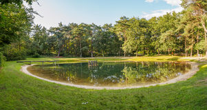 Quiet swimming lake in Holland Royalty Free Stock Images