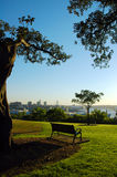 Quiet in sydney. Abandoned bench in The Rocks (Sydney), Darling Harbour lookout Royalty Free Stock Photos