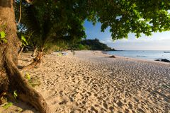 Quiet tropical wild beach Royalty Free Stock Photo