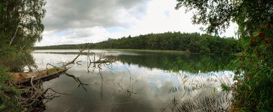 Quiet wooded lake. A panoramic view of a quiet, wooded lake on a cloudy day Stock Image