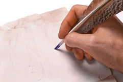 Quill. In the writing hand Stock Photography