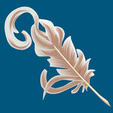 Quill feather. A writing quill/ feather illustration vector illustration