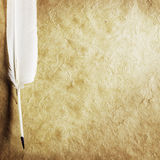 Quill on Parchment Paper Stock Photography