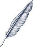 Quill Pen Imagen de archivo