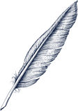 Quill Pen. Antique Quill Pen for writing Stock Image