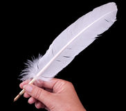 Quill pen in hand Stock Photo