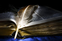Quill pen lying on open book Royalty Free Stock Photo