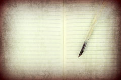 Quill pen on a open notebook. Royalty Free Stock Photos