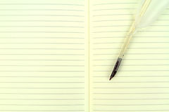 Quill pen on a open notebook. Vintage image Royalty Free Stock Images