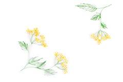 Quilling de papier, fleurs de papier colorées Photographie stock libre de droits