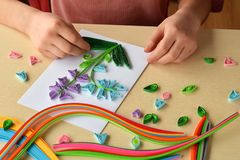 Quilling technique. Girl making decorations or greeting card. Paper strips, flower, scissors. Handmade crafts on holiday: Birthday. Mother or Father Day, March royalty free stock image