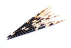 quills дикобраза стоковое изображение