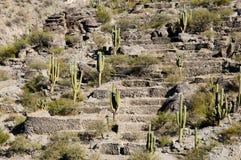 Quilmes Ruins - Tucuman - Argentina Stock Image