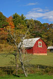 Quilt Barn & Autumn Foliage (vertical) Stock Photo