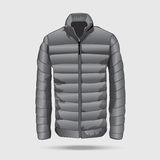 Quilted bomber,puffer jacket. Stock Photos