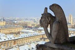 Quimera famosa de Notre Dame que negligencia Paris. Foto de Stock