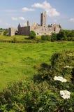 Quin Abtei, berühmt in der Grafschaft Clare, Irland Stockfotografie