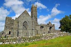 Quin Abtei Co. Clare Irland Stockfotografie