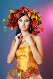Quin autumn Royalty Free Stock Photo