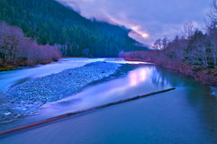 Quinault Valley Royalty Free Stock Photos