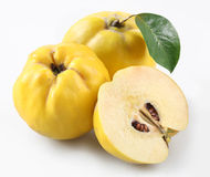 Quince. On a white background royalty free stock photo