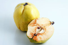 Quince. On a white background Royalty Free Stock Image