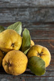 Quince. On wooden table, close up stock photos