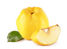 Quince. Fresh yellow quince with slce isolated white background stock image