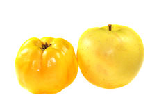 Quince and apple Royalty Free Stock Images