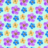 Quince, apple quince. Seamless pattern texture of flowers. Flora. Quince, apple quince. Texture of flowers. Seamless pattern for continuous replicate. Floral royalty free illustration