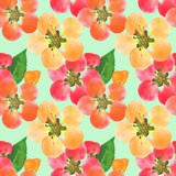 Quince, apple quince. Seamless pattern texture of flowers. Flora. Quince, apple quince. Texture of flowers. Seamless pattern for continuous replicate. Floral vector illustration
