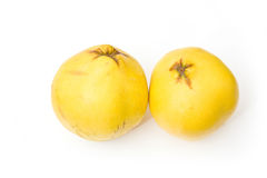 Yellow quince apples Stock Photography