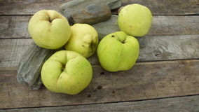 Quince. Autumn fresh qunces on wooden table with stones Stock Photos