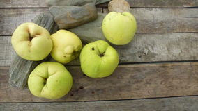 Quince. Autumn fresh qunces on wooden table with stones Stock Image