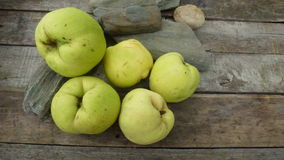 Quince. Autumn fresh qunces on wooden table with stones Royalty Free Stock Images