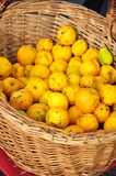 Quince basket Royalty Free Stock Photography