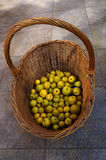 Quince basket Royalty Free Stock Photo
