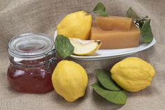 Quince cheese and jelly. Still life with homemade  quince cheese and jelly Stock Image