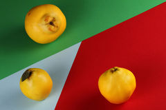 Quince colors. Quince Mozaic Red green and blue Royalty Free Stock Photo