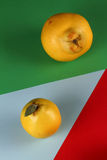 Quince colors. Three Quince three Mozaic colors Stock Photos