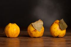 Quince composition Stock Images