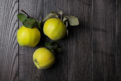 Quince on dark wooden background. Autumn fruits Royalty Free Stock Images