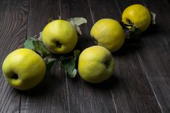 Quince on dark wooden background. Autumn fruits Stock Photo